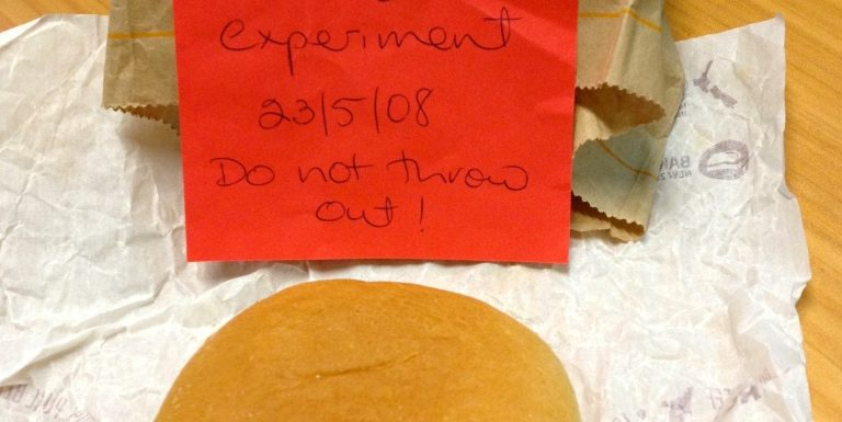3 Life Lessons From a 12-Year-Old Burger